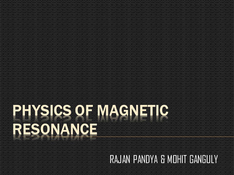 RAJAN PANDYA & MOHIT GANGULY