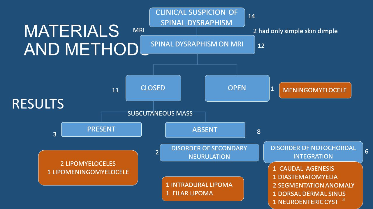MATERIALS AND METHODS SPINAL DYSRAPHISM ON MRI CLOSED PRESENT ABSENT OPEN 12 CLINICAL SUSPICION OF SPINAL DYSRAPHISM 14 1 11 SUBCUTANEOUS MASS 2 LIPOMYELOCELES 1 LIPOMENINGOMYELOCELE 3 8 2 had only simple skin dimple MENINGOMYELOCELE DISORDER OF SECONDARY NEURULATION DISORDER OF NOTOCHORDAL INTEGRATION 1 INTRADURAL LIPOMA 1 FILAR LIPOMA 1 CAUDAL AGENESIS 1 DIASTEMATOMYELIA 2 SEGMENTATION ANOMALY 1 DORSAL DERMAL SINUS 1 NEUROENTERIC CYST 2 6 RESULTS MRI 3