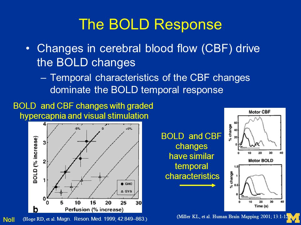Noll The BOLD Response Changes in cerebral blood flow (CBF) drive the BOLD changes –Temporal characteristics of the CBF changes dominate the BOLD temp