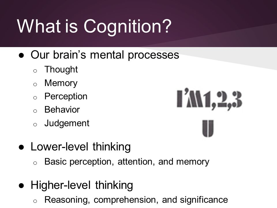 What is Cognition? ●Our brain's mental processes o Thought o Memory o Perception o Behavior o Judgement ●Lower-level thinking o Basic perception, atte