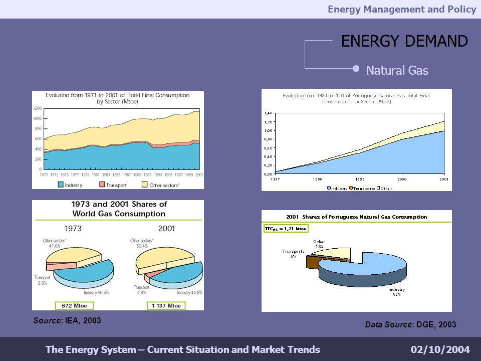 Energy Management and Policy 02/10/2004The Energy System – Current Situation and Market Trends ENERGY DEMAND Natural Gas Source: IEA, 2003 Data Source: DGE, 2003
