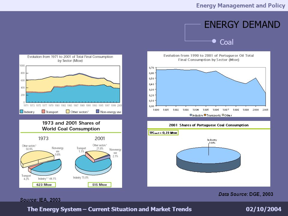 Energy Management and Policy 02/10/2004The Energy System – Current Situation and Market Trends ENERGY DEMAND Coal Source: IEA, 2003 Data Source: DGE, 2003