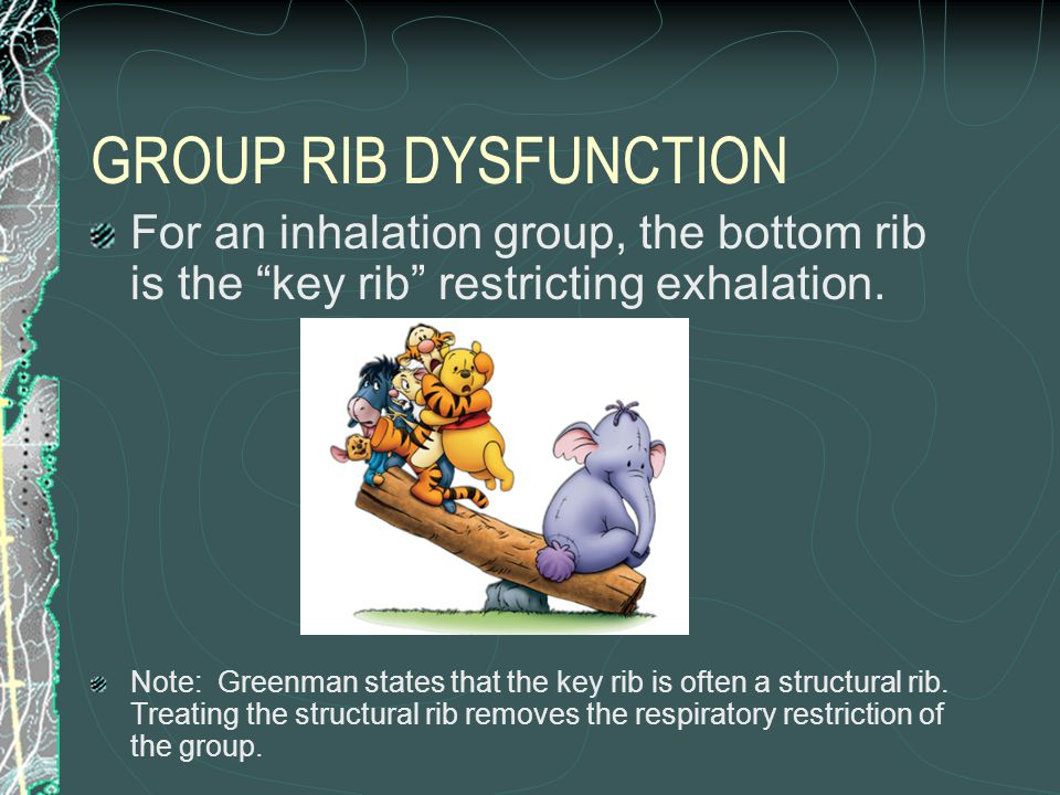 """GROUP RIB DYSFUNCTION For an inhalation group, the bottom rib is the """"key rib"""" restricting exhalation. Note: Greenman states that the key rib is often"""