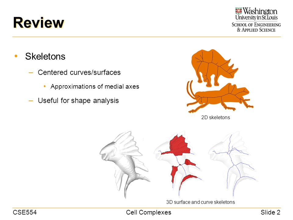CSE554Cell ComplexesSlide 2 Review Skeletons – Centered curves/surfaces Approximations of medial axes – Useful for shape analysis 2D skeletons 3D surface and curve skeletons