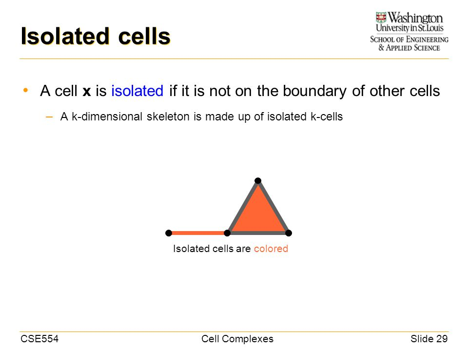 CSE554Cell ComplexesSlide 29 Isolated cells A cell x is isolated if it is not on the boundary of other cells – A k-dimensional skeleton is made up of isolated k-cells Isolated cells are colored