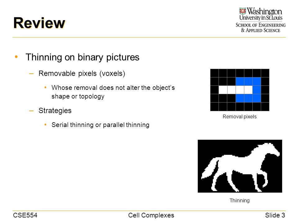 CSE554Cell ComplexesSlide 3 Review Thinning on binary pictures – Removable pixels (voxels) Whose removal does not alter the object's shape or topology – Strategies Serial thinning or parallel thinning Removal pixels Thinning