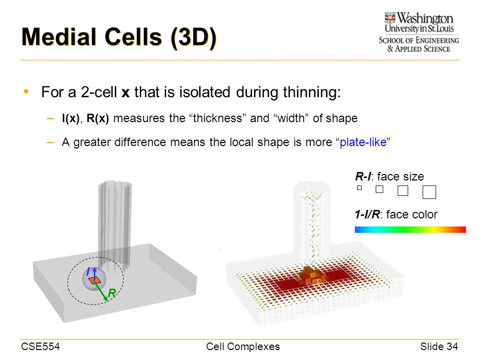 CSE554Cell ComplexesSlide 34 Medial Cells (3D) For a 2-cell x that is isolated during thinning: – I(x), R(x) measures the thickness and width of shape – A greater difference means the local shape is more plate-like I R R-I: face size 1-I/R: face color