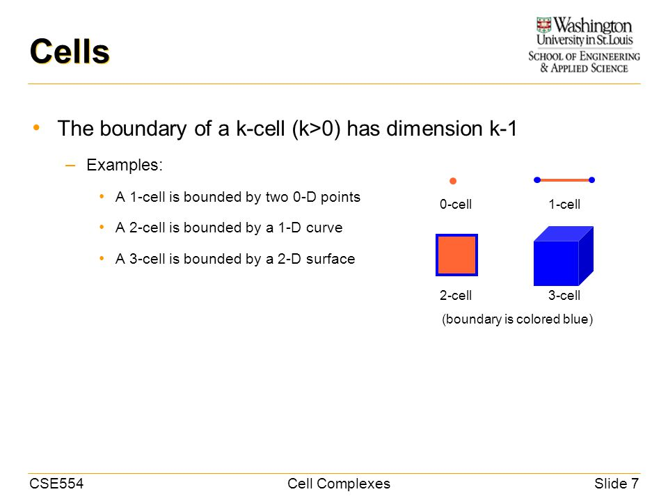CSE554Cell ComplexesSlide 7 Cells The boundary of a k-cell (k>0) has dimension k-1 – Examples: A 1-cell is bounded by two 0-D points A 2-cell is bounded by a 1-D curve A 3-cell is bounded by a 2-D surface 0-cell1-cell 2-cell3-cell (boundary is colored blue)