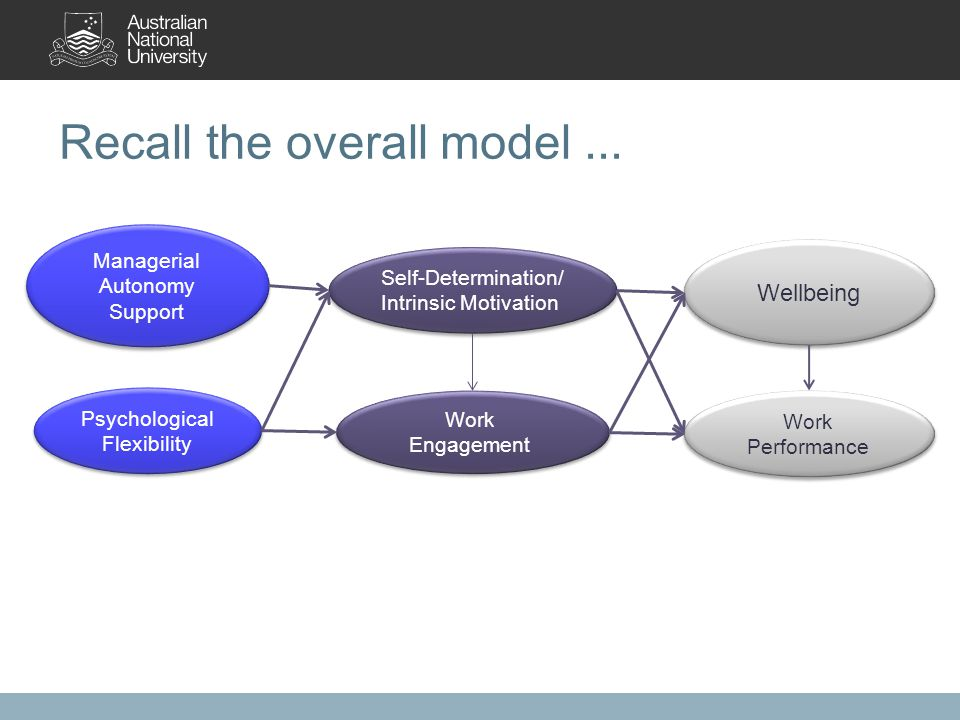 Recall the overall model... Work Engagement Work Engagement Wellbeing Self-Determination/ Intrinsic Motivation Work Performance Psychological Flexibil