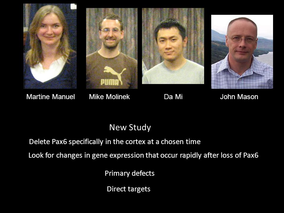Martine Manuel Mike Molinek Da Mi John Mason New Study Delete Pax6 specifically in the cortex at a chosen time Look for changes in gene expression that occur rapidly after loss of Pax6 Primary defects Direct targets