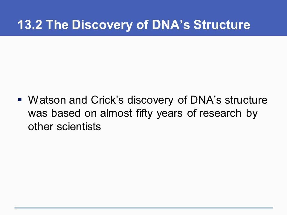 13.2 The Discovery of DNA's Structure  Watson and Crick's discovery of DNA's structure was based on almost fifty years of research by other scientist