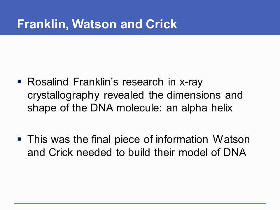 Franklin, Watson and Crick  Rosalind Franklin's research in x-ray crystallography revealed the dimensions and shape of the DNA molecule: an alpha hel