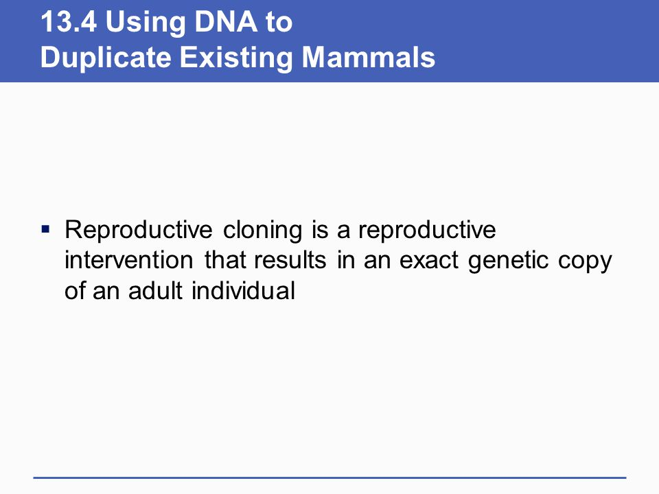 13.4 Using DNA to Duplicate Existing Mammals  Reproductive cloning is a reproductive intervention that results in an exact genetic copy of an adult i