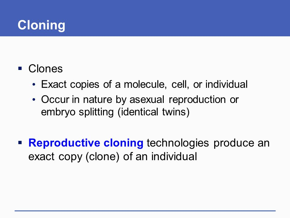 Cloning  Clones Exact copies of a molecule, cell, or individual Occur in nature by asexual reproduction or embryo splitting (identical twins)  Repro
