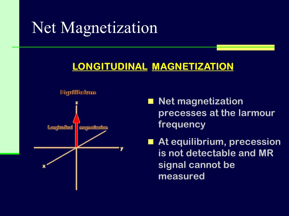 Net magnetization precesses at the larmour frequency At equilibrium, precession is not detectable and MR signal cannot be measured LONGITUDINAL MAGNET