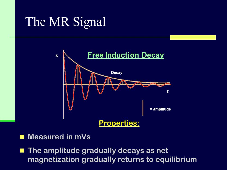 Decay = amplitude The MR Signal t s Properties: Measured in mVs The amplitude gradually decays as net magnetization gradually returns to equilibrium F