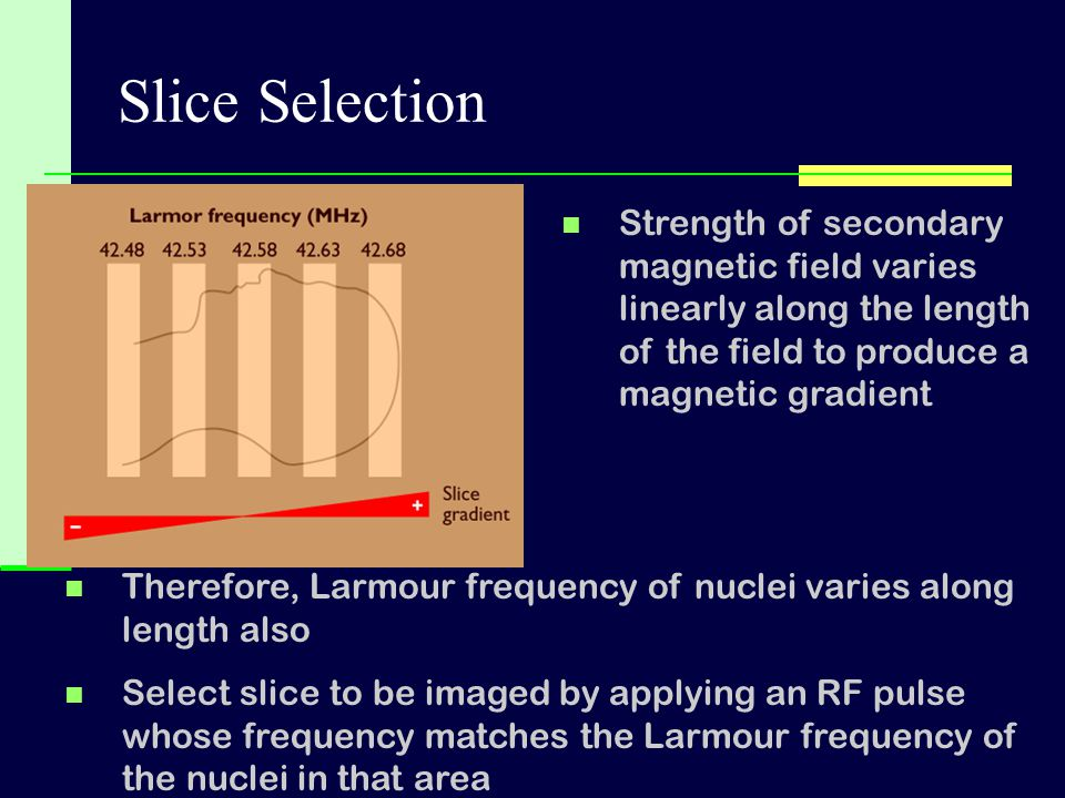 Slice Selection Therefore, Larmour frequency of nuclei varies along length also Select slice to be imaged by applying an RF pulse whose frequency matc
