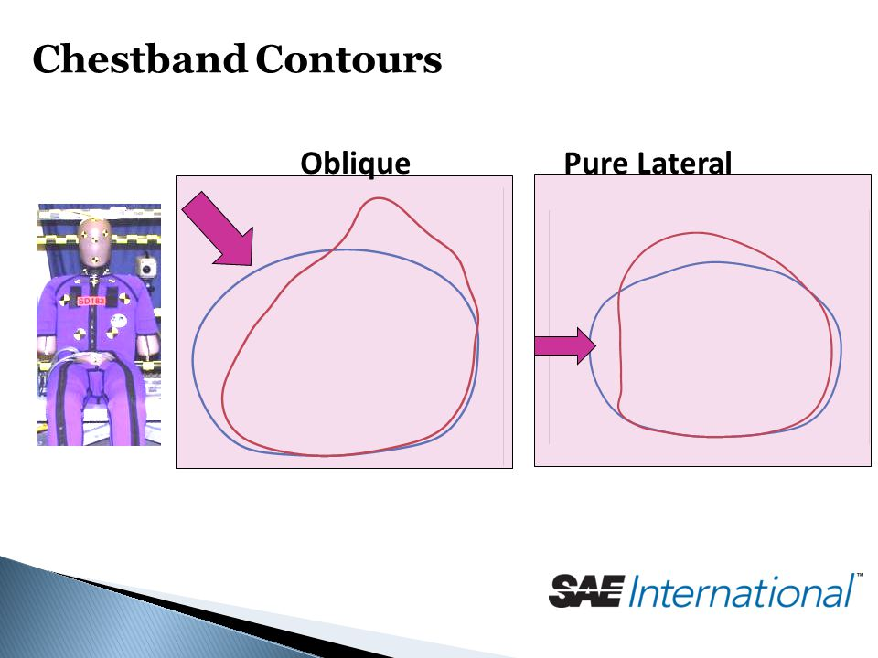 Chestband Contours ObliquePure Lateral