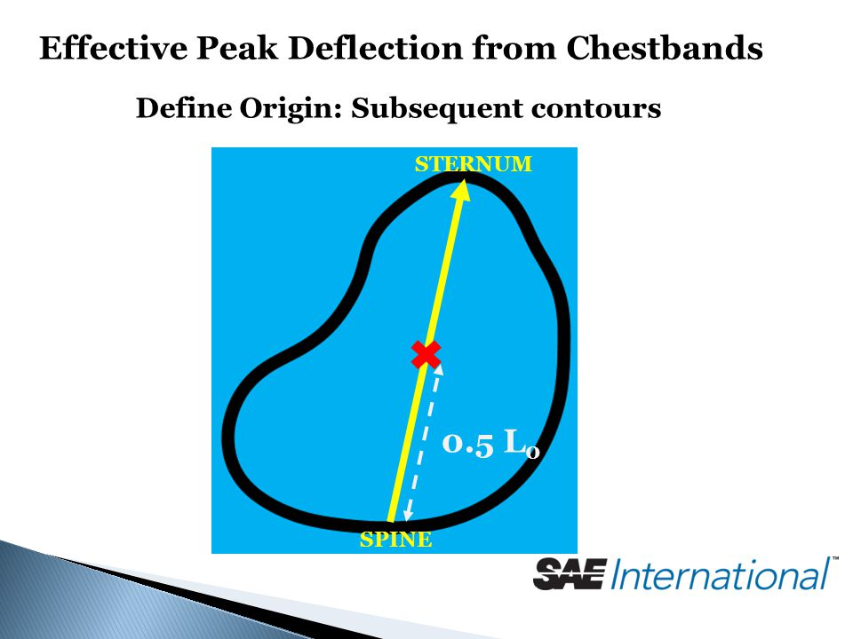Effective Peak Deflection from Chestbands Define Origin: Subsequent contours SPINE STERNUM 0.5 L 0