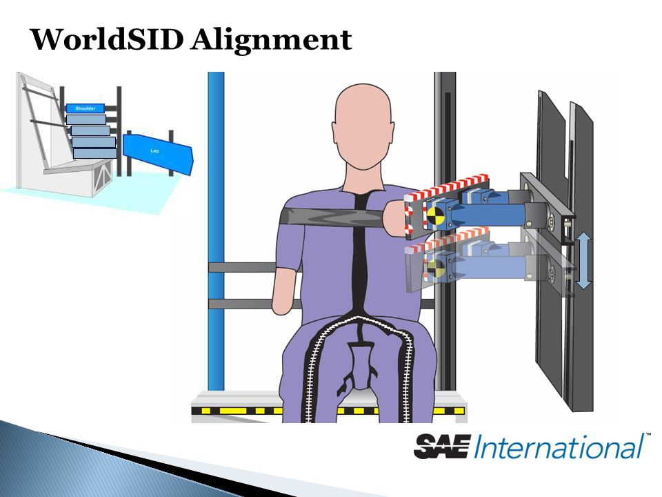 WorldSID Alignment