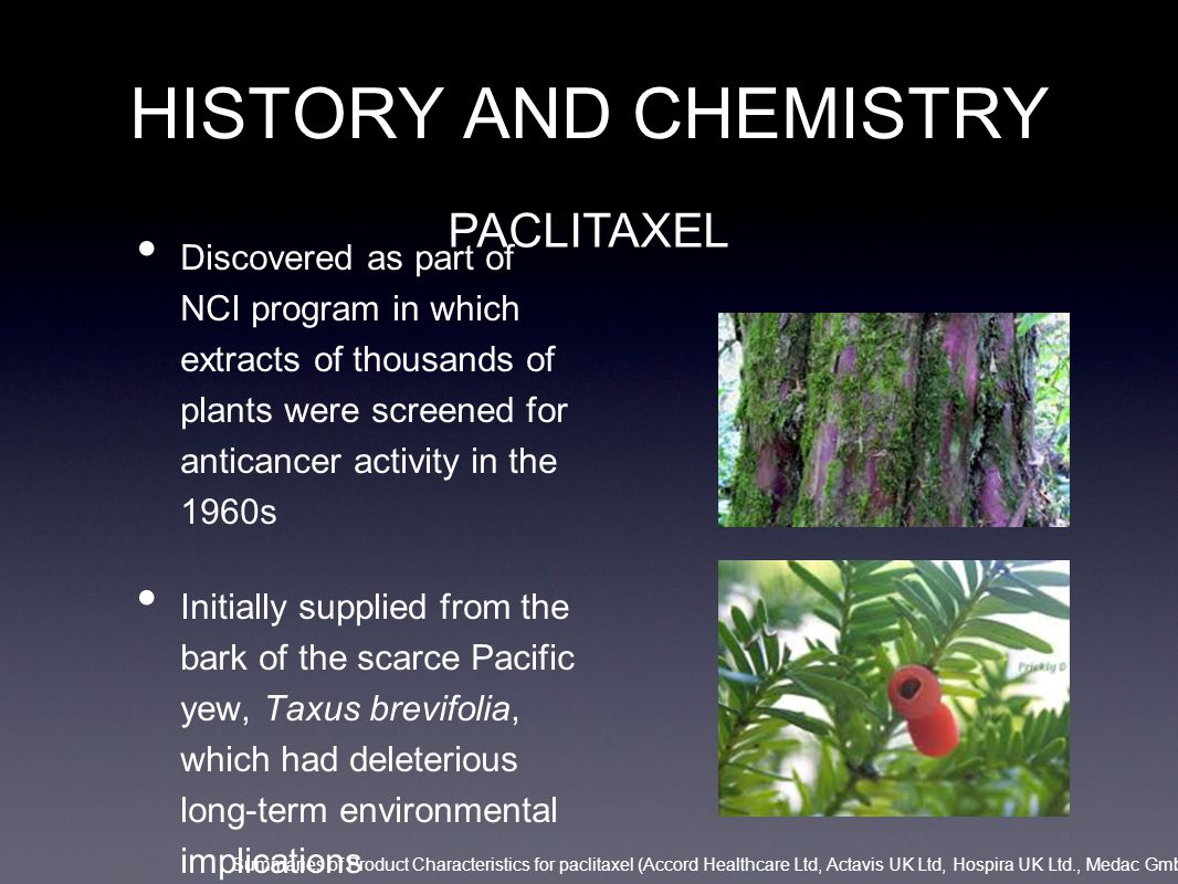 HISTORY AND CHEMISTRY 1980s: more potent semisynthetic derivative of paclitaxel Derived from the extracts from the needless of the European yew tree, Taxus baccata DOCETAXEL Summaries of Product Characteristics for Taxotere/docetaxel (Sanofi-Aventis