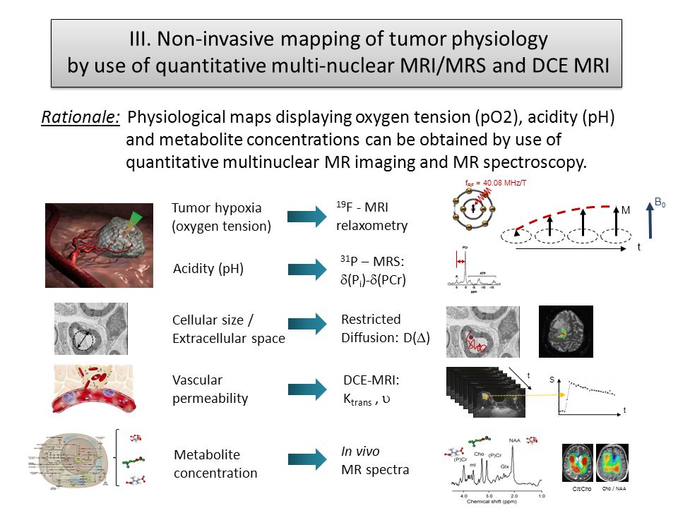 III. Non-invasive mapping of tumor physiology by use of quantitative multi-nuclear MRI/MRS and DCE MRI Rationale: Physiological maps displaying oxygen