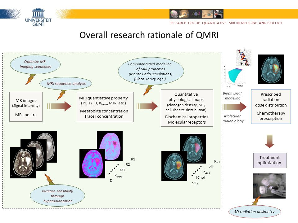 GifMI & Radiology RevakiMedisip / ElisIbitech Gynecology & Pharmacy Gastrointestinal surgery Pulmonology Waegener (company) RESEARCH GROUP QUANTITATIVE MRI IN MEDICINE AND BIOLOGY Support to other research groups DCE MRI modeling Elastography (WIP – prelim.) Bimodal MRI contrast agent Fluorescence / MRI (Eu DTPA/ Gd DTPA) Pharmaceutical drug release Hyperpolarized gas MRI (functional imaging) Temperature mapping Cooling pads Quantitative metabolic MRS in migraine Coil design for 31 P MRS Quant.