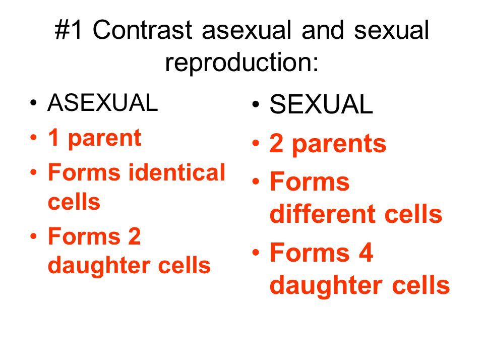 #1 Contrast asexual and sexual reproduction: ASEXUAL 1 parent Forms identical cells Forms 2 daughter cells SEXUAL 2 parents Forms different cells Form