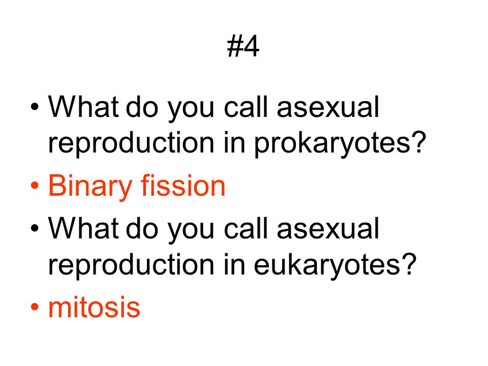 #4 What do you call asexual reproduction in prokaryotes? Binary fission What do you call asexual reproduction in eukaryotes? mitosis