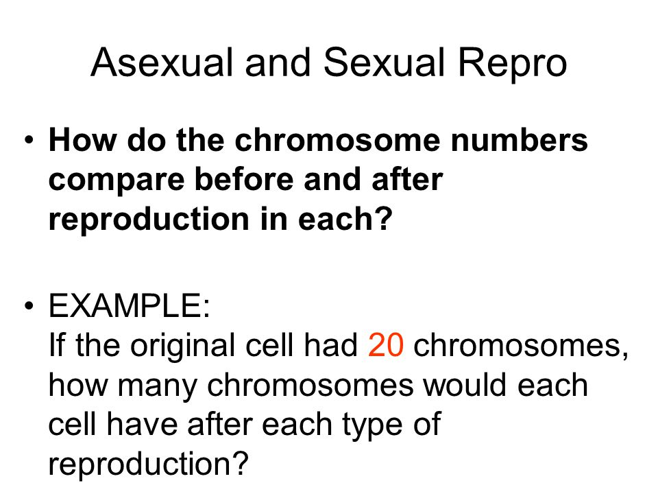 ANSWER Sexual Reproduction -resulting cells have half the number of chromosomes (start with 20 – end with 10 chromosomes) Diploid to haploid Asexual Reproduction -resulting cells have the identical number of chromosomes (start and end with 20 chromosomes) Diploid to diploid