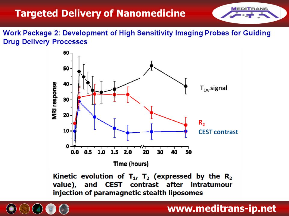 Targeted Delivery of Nanomedicine www.meditrans-ip.net Work Package 2: Development of High Sensitivity Imaging Probes for Guiding Drug Delivery Proces