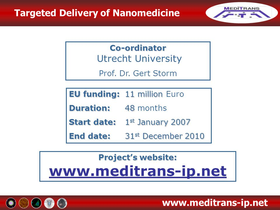 Targeted Delivery of Nanomedicine www.meditrans-ip.net Work Package 8: Application to Multiple Sclerosis WP8 Leader: UNITO - Dr Giuseppe Digilio (giuseppe.digilio@unito.it) Previous WP8 Leader: RBM - Dr Beatrice Greco (beatrice.greco@merckserono.net) WP8 Participants: UU, FOM, PHILIPS, RBM, BRACCO, UNITO, GUERBET, PHILIPSD, IDT, UMC UTRECHT, MSSA The clinical benefits are more pronounced with the liposomal drugs as compared to free corticosteroids, at least up to 4 days after the onset of the pathology