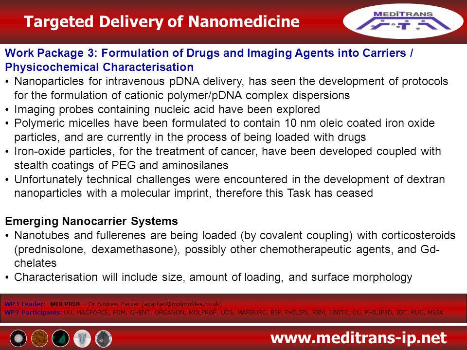 Targeted Delivery of Nanomedicine www.meditrans-ip.net WP3 Leader: MOLPROF - Dr Andrew Parker (aparker@molprofiles.co.uk) WP3 Participants: UU, MAGFOR
