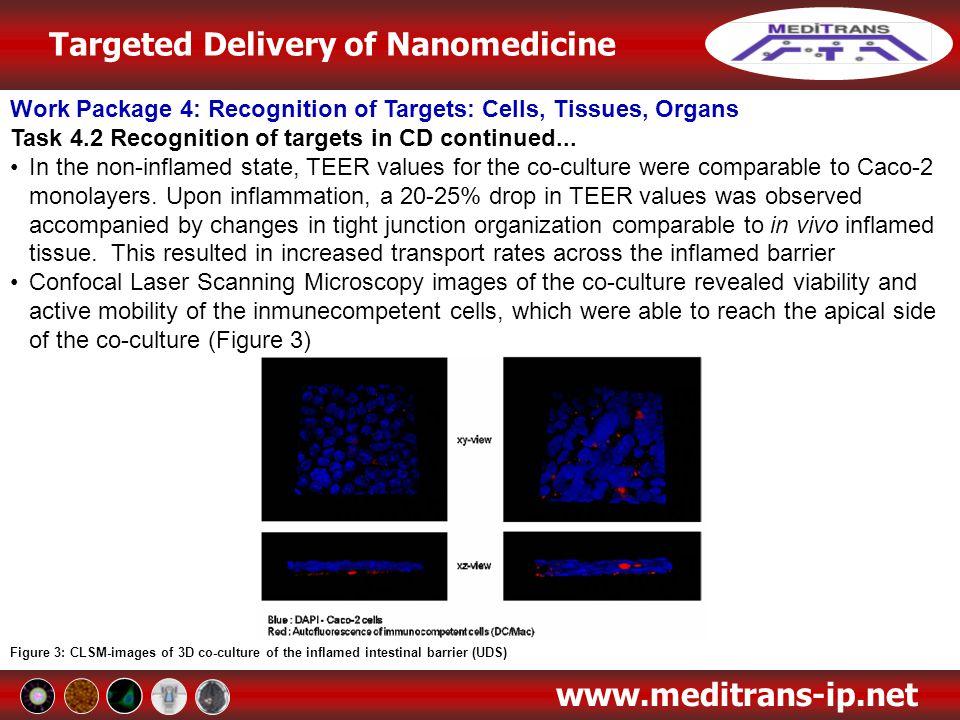 Targeted Delivery of Nanomedicine www.meditrans-ip.net Work Package 4: Recognition of Targets: Cells, Tissues, Organs Task 4.2 Recognition of targets