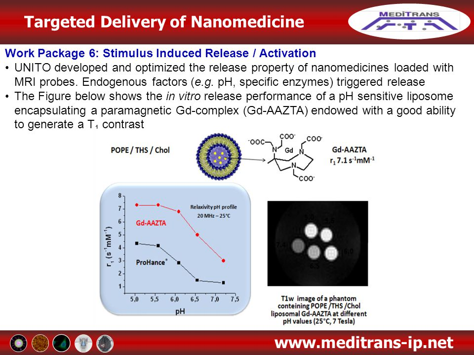 Targeted Delivery of Nanomedicine www.meditrans-ip.net Work Package 6: Stimulus Induced Release / Activation UNITO developed and optimized the release