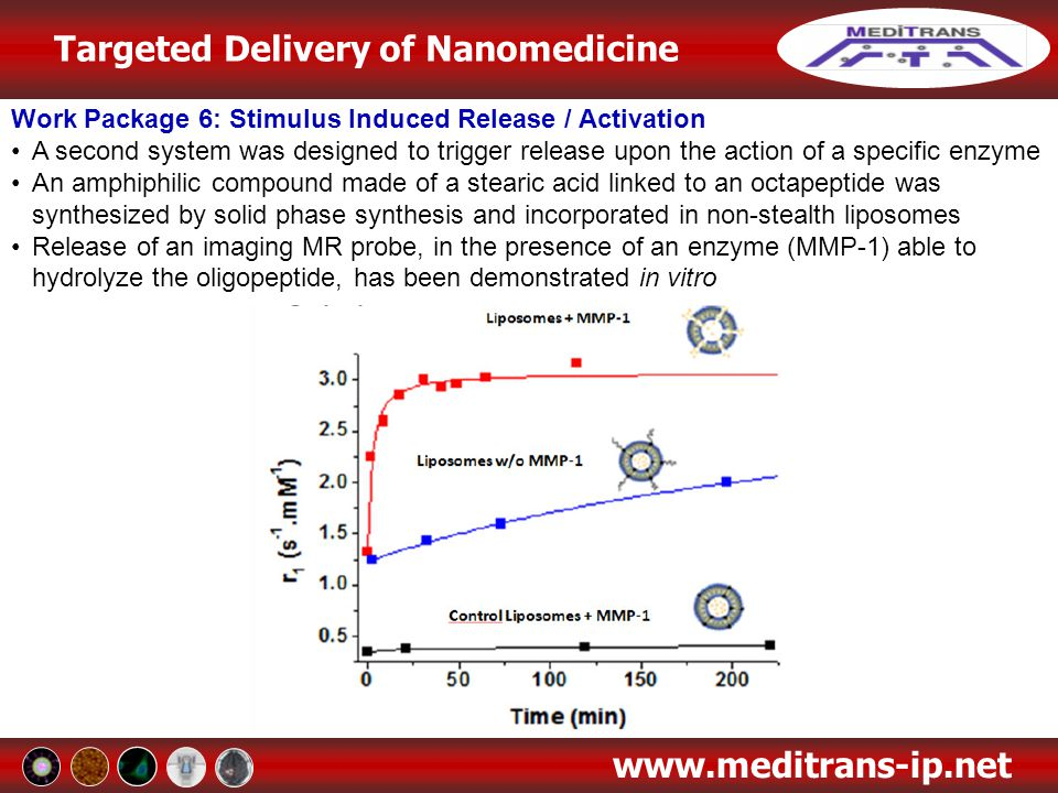 Targeted Delivery of Nanomedicine www.meditrans-ip.net Work Package 6: Stimulus Induced Release / Activation A second system was designed to trigger r