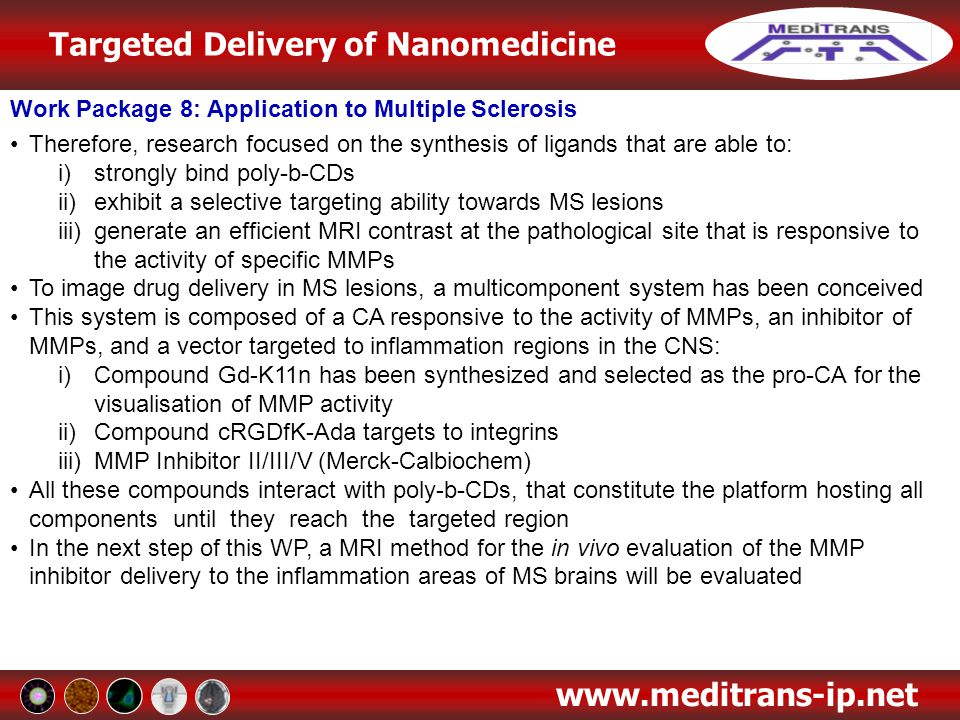 Targeted Delivery of Nanomedicine www.meditrans-ip.net Work Package 8: Application to Multiple Sclerosis Therefore, research focused on the synthesis