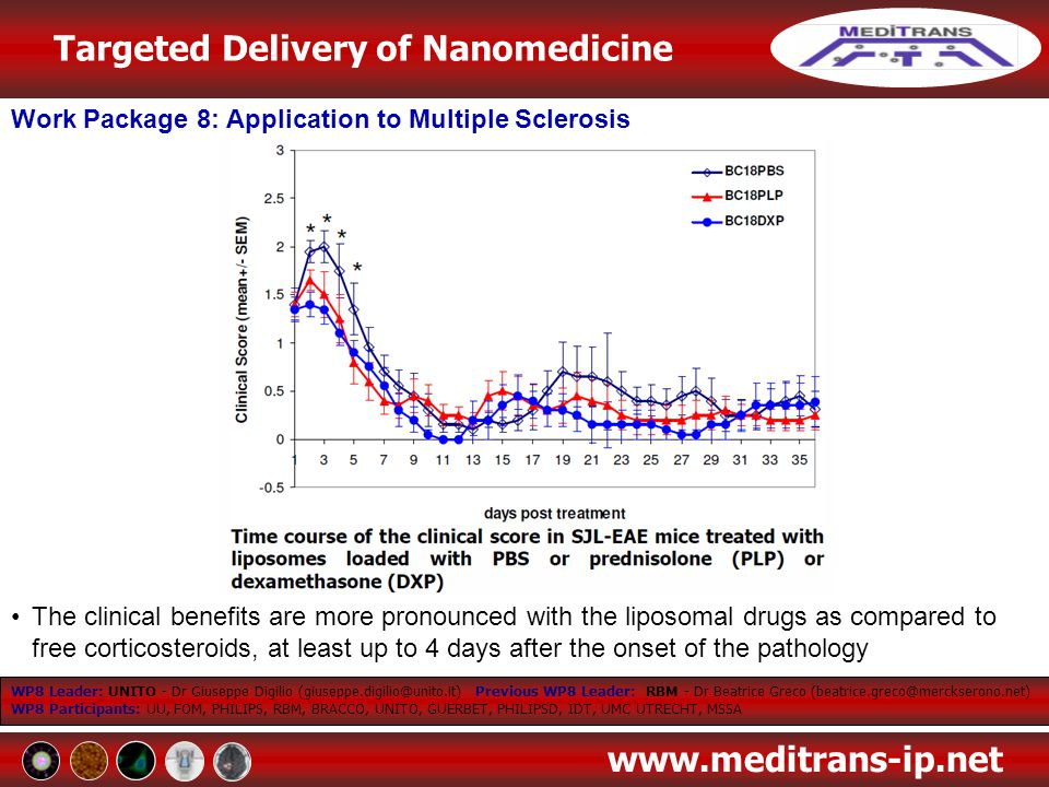 Targeted Delivery of Nanomedicine www.meditrans-ip.net Work Package 8: Application to Multiple Sclerosis WP8 Leader: UNITO - Dr Giuseppe Digilio (gius