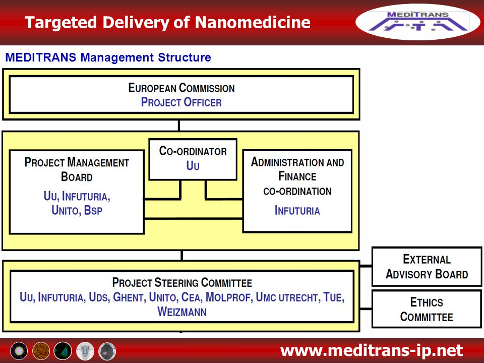 Targeted Delivery of Nanomedicine www.meditrans-ip.net Work Package 3: Formulation of Drugs and Imaging Agents into Carriers / Physicochemical Characterisation Objectives To load the nanocarriers with biologically active compounds and imaging agents To study the physicochemical characteristics of the nanomedicines which are relevant for the overall aims of MEDITRANS Work plan and conclusions from the third year WP3 encompasses the formulation of nanocarriers, based on established, candidate and emerging systems, loaded with drugs and imaging agents, and their subsequent characterisation Formulation of nanocarriers with drugs, will focus on loading with drugs for the treatment of Crohn's Disease, Cancer and MS Established Nanocarrier Systems Significant progress has been made on the formulation and characterisation of established nanocarrier systems Long-circulating liposomes for passive targeting loaded with corticosteroids have demonstrated favourable size and sufficient encapsulation, and are currently being investigated for in vitro and in vivo response
