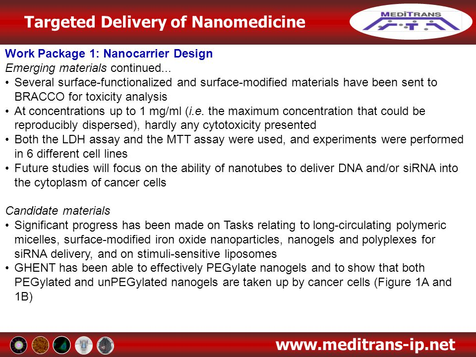 Targeted Delivery of Nanomedicine www.meditrans-ip.net Work Package 3: Formulation of Drugs and Imaging Agents into Carriers / Physicochemical Characterisation Folate receptor-targeted delivery of siRNA and pDNA has also been explored PLGA nanoparticles have been successfully complexed with folate-PEG-PEI polyplexes and pDNA Biodegradable amine modified branched polyesters (based on DEAPA-68-10) have been formulated with siRNA The nanocarriers have been developed with a particle size of 150-225 nm, zeta potential of 40-50mV, and are sufficiently stable for endocyctotic uptake During in vitro studies the formulation has demonstrated efficient knockdown of the Luciferase reporter gene, with minor, or no, cytotoxicity Dextran microgels and nanogels have been formulated with siRNA Homogenous loading of the siRNA has been achieved in microgels Nanogels formulated with a particle size of 200 nm and a zeta potential of 0-30mV High loading of siRNA can be achieved without inducing aggregation In order to use dextran for siRNA delivery in vivo, it is expected that these carriers will need to be PEG-coated to prevent opsonisation and fast clearance from the blood A PEG coating has been successfully coupled to the dextran nanoparticles without impacting on the siRNA loading or release
