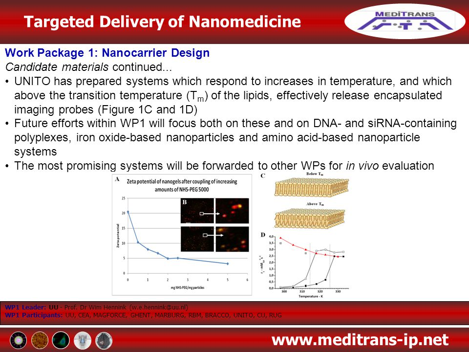 Targeted Delivery of Nanomedicine www.meditrans-ip.net Work Package 1: Nanocarrier Design Candidate materials continued... UNITO has prepared systems