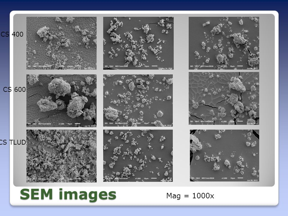 SEM images CS 400 CS 600 CS TLUD Mag = 1000x