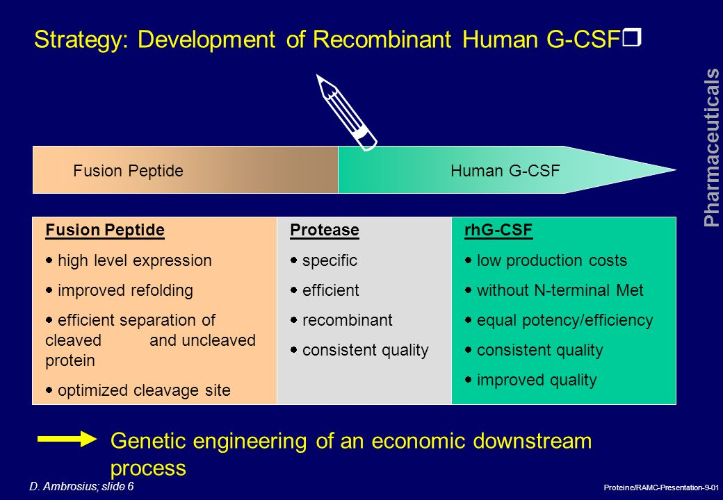 r Pharmaceuticals D. Ambrosius; slide 6 Proteine/RAMC-Presentation-9-01 Genetic engineering of an economic downstream process Strategy: Development of