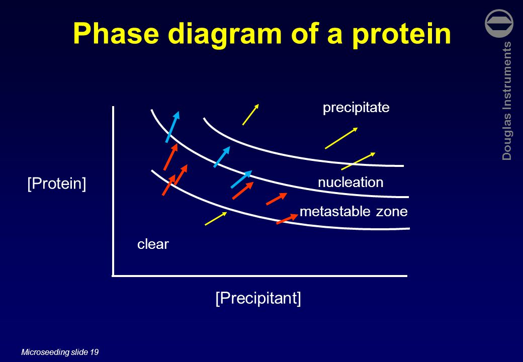Douglas Instruments Microseeding slide 19 Phase diagram of a protein [Protein] [Precipitant] clear precipitate nucleation metastable zone