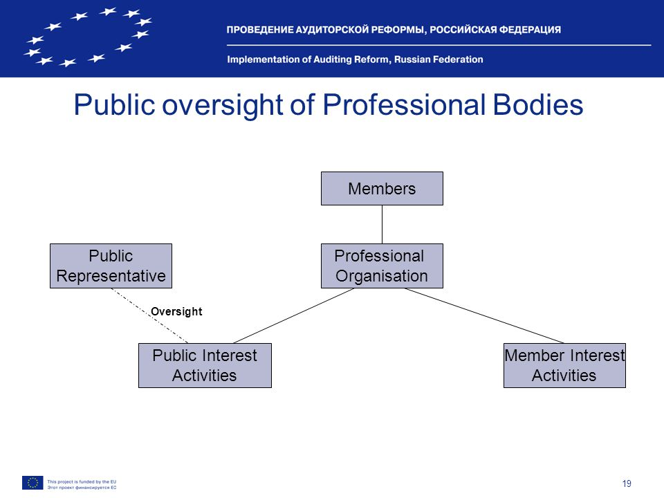 19 Public oversight of Professional Bodies Public Representative Public Interest Activities Professional Organisation Members Member Interest Activities Oversight