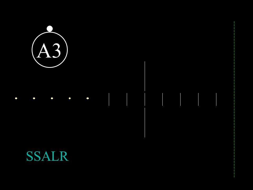 A4 MALSF / SSALSF