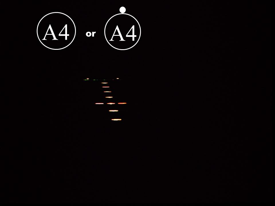 A1A2 or