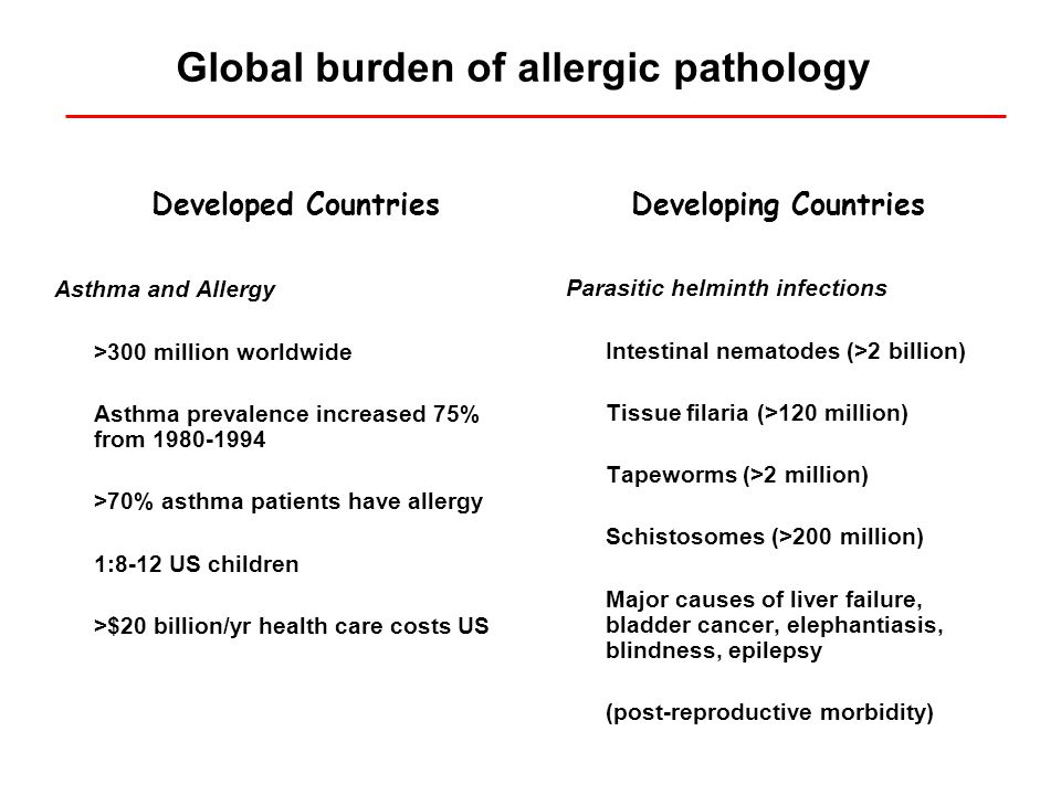 The global epidemic of asthma Masoli et al., The global burden of asthma: executive summary of the GINA dissemination committee report.