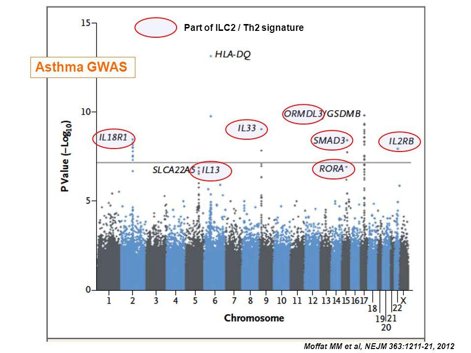 Moffat MM et al, NEJM 363:1211-21, 2012 Asthma GWAS Part of ILC2 / Th2 signature Asthma GWAS