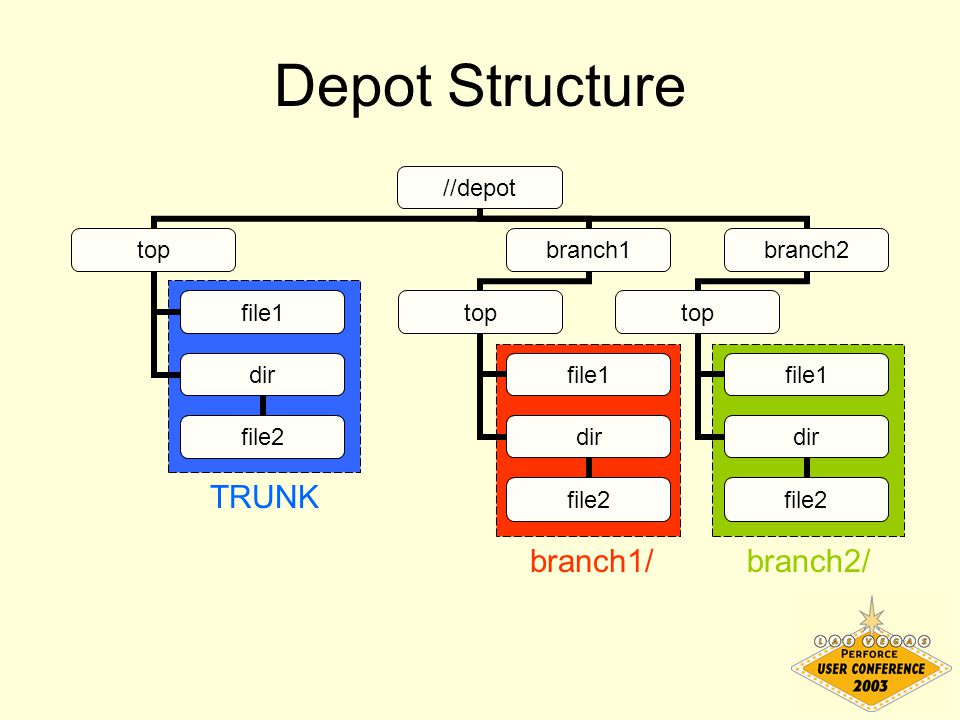 //depot top file1 dir file2 branch1 top file1 dir file2 branch2 top file1 dir file2 Depot Structure TRUNK branch1/branch2/